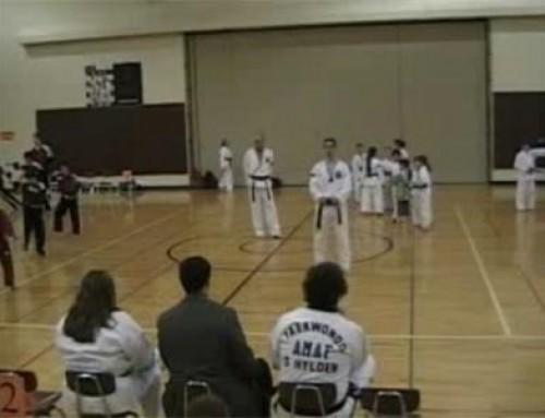 Hapkido Sword Form • Bourelle Martial Arts